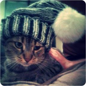 Mimi et son bonnet :)