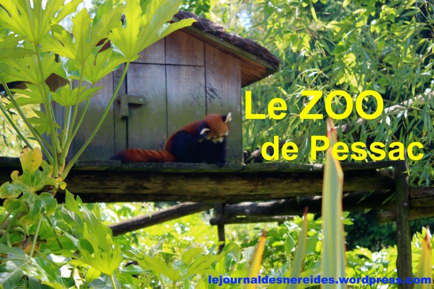 Zoo pessac avis