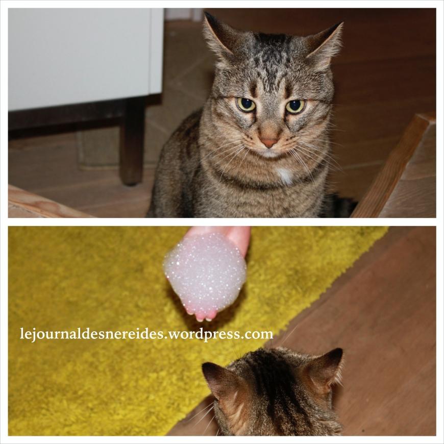 LUSH & Monsieur Mimi, une histoire d'amour!